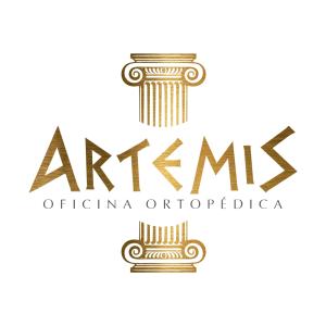 ARTEMIS OFICINA ORTOPEDICA LTDA | Reconstrucao-Ligamentar